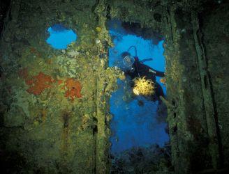 Rust Never Sleeps - Wreck Diving