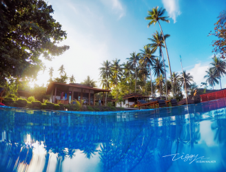 Dive into Lembeh Resort
