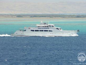 Oman Aggressor