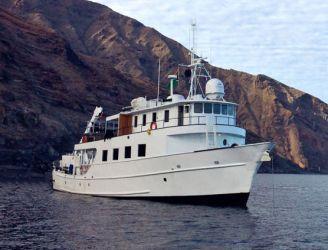 Nautilus Under Sea Guadalupe