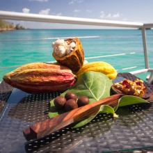 Chocolate Festival, True Blue Bay, Grenada
