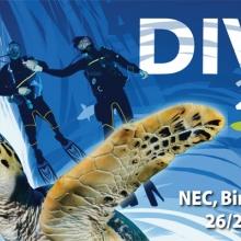 Dive 2013