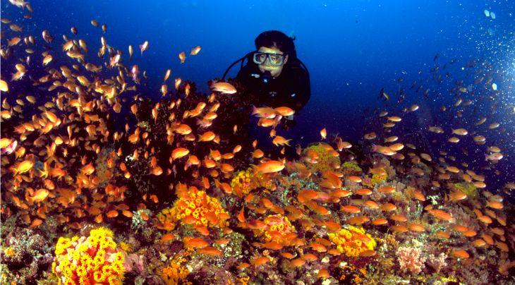 Philippines Tourist Board