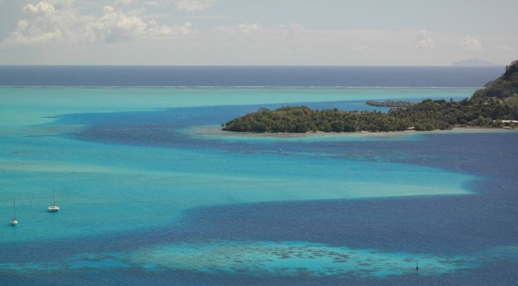 French Polynesian Liveaboards Trips | Diving Holidays | Regaldive